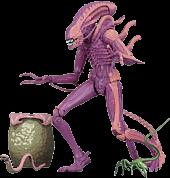 "Aliens - Xenomorph Warrior Arcade Appearance 9"" Action Figure"
