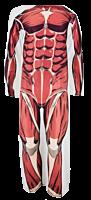 Colossal Titan Snuggler Blanket