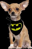 Batman - Batman Bandana Dog Collar (S)