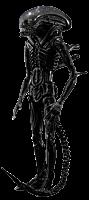 """Alien - Alien Big Chap S.H.MonsterArts 7"""" Action Figure"""