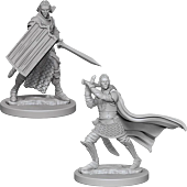 Dungeons and Dragons - Deep Cuts Unpainted Minis Elf Male Paladin Miniature Figure 2-Pack