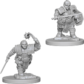 Dungeons and Dragons - Nolzur's Marvelous Unpainted Minis Dwarf Female Fighter 2-Pack