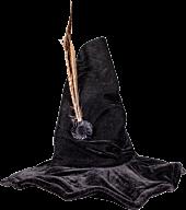 Harry Potter - Professor McGonagall Hat