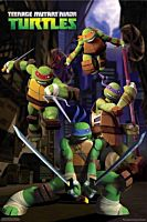 Teenage Mutant Ninja Turtles - Alley Cartoon Poster