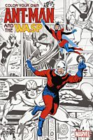 Ant-Man and the Wasp - Colour Your Own Ant-Man and the Wasp Paperback