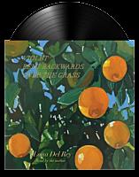 Lana Del Rey - Violet Bent Backwards Over The Grass LP Vinyl Record