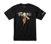 Dragon Ball Z - DBZ x Primitive Nuevo Saiyan Goku T-Shirt Black