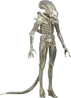 Translucent Prototype Alien 1/4 Scale Action Figure