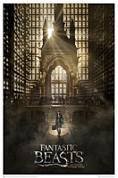 "Fantastic Beasts and Where to Find Them - Magical Congress 27"" x 40"" Art Print"