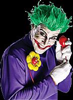 Batman - Arkham Asylum - Joker Adult Accessory Kit