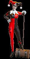 Batman - Harley Quinn 1/6th Scale Action Figure