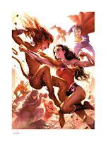 Justice League - Justice League: Wonder Woman vs Cheetah Fine Art Print by Alex Garner
