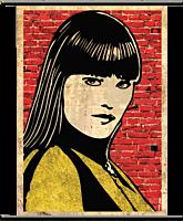 Watchmen - Silk Spectre 'Pop Art' Wall Scroll